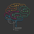 Flat linear Infographic Education Outline Brain Concept.Vector Royalty Free Stock Photo