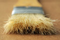 Flat paintbrush bristles Stock Image