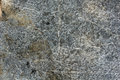 Flat stone gray texture Stock Images