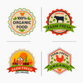 Flat style of bio organic eco healthy food label logo template and vintage vegan farm element in orange green color