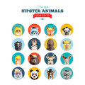 Flat style hipster animals avatar vector icon set for social media or web site on isolated background Royalty Free Stock Images