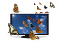 Flat TV with blue sky and insects Royalty Free Stock Photo