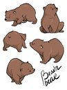 Flat vector set of large bear in different poses. Wild forest creature with brown fur.