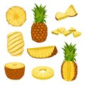 Flat vector set of whole, halves and chopped pineapples. Fresh and juicy tropical fruit. Elements for packaging design