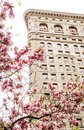 Flatiron Building in New York City Royalty Free Stock Photo