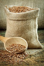 Flax seed Royalty Free Stock Image