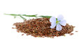 Flax seeds and flowers on white background Royalty Free Stock Photos