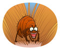 Flea in animal fur