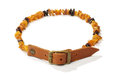 Flea and tick amber collar for pets dogs or cats Stock Photo