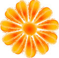 Fleur orange Images stock