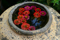 Fleurs dans le pot traditionnel Photo libre de droits