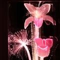 Fleurs optiques roses de fibre Images stock