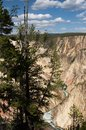 Fleuve de Yellowstone Photos stock