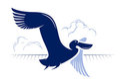 Flight bird. duck, pelican Royalty Free Stock Photos