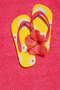 Flip Flops and Hibiscus Royalty Free Stock Image