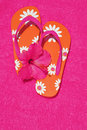 Flip Flops and Hibiscus Stock Images