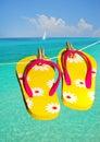 Flip flops at ocean Stock Photos