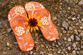 Flip flops and yellow flower. Royalty Free Stock Photos