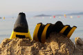 The flipper yellow and black colored over sands and sea Royalty Free Stock Photos