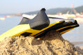 The flipper yellow and black colored over sands and sea Stock Photography