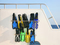Flippers after a dive Royalty Free Stock Photo