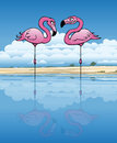 Flirting flamingos two flamingo in an african lake Stock Photo