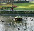 Floating duck house in park Royalty Free Stock Photo