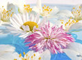 Floating Flowers Royalty Free Stock Photo
