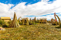 Floating islands on lake titicaca puno peru south america dense root that plants khili interweave form natural layer about one to Royalty Free Stock Image