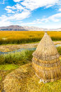 Floating islands on lake titicaca puno peru south america thatched home dense root that plants interweave form natural layer Royalty Free Stock Images