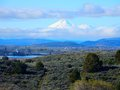 A floating Mount Shasta ~ my view in Klamath Falls Oregon Royalty Free Stock Photo