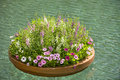 Floating planter of flowers Royalty Free Stock Photo
