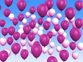 Floating purple and white balloons show girly showing birthday party Stock Photo