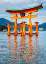 The Floating Torii Gate, Miyaj...