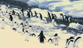 Flock of Adelie penguins Stock Photography