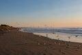 Flock of seagulls on deserted beach at sunrise Stock Photos