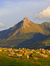 Flock of sheeps in mountains of Aralar, Gipuzkoa Stock Photo