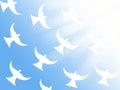Flock Of White Doves Flying To...