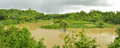 Flood in bangladesh river flooding green fields Stock Photos