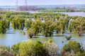 Flood calamity flooded forest trees on water Stock Images