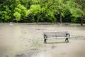 Flood in park picnic area of sunnybrook toronto flooded after heavy rains Royalty Free Stock Photos