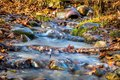 Picture : Flood water gushes through an intersting pipe and downed branches surrounded by colorful fall foliage  trees