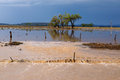 Flood waters in the darling downs over farmland queensland australia Royalty Free Stock Photo