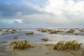 Flooded beach with Sand couch grass Royalty Free Stock Photo