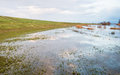 Flooded grass next to a dike Royalty Free Stock Photo