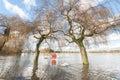 Flooded parkland Royalty Free Stock Photo