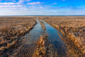Flooded rut road in steppe Royalty Free Stock Images