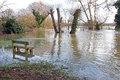 Floods with bench and trees flood water engulfs an area a public seat in the united kingdom during the heavy rains in january Royalty Free Stock Photo