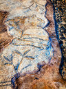 Floor mosaic fragment of in the city of beit she an in israel Stock Photo