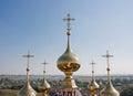 Flora da igreja das abóbadas e lavra cidade suzdal Foto de Stock Royalty Free